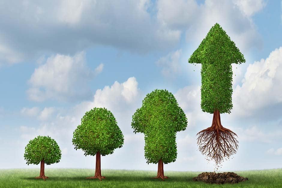 Cómo estructurar el área de RR.HH para apoyar el crecimiento de la PYME